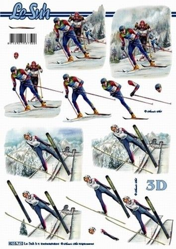 Le Suh knipvel wintersporten langlaufen 8215710 (Locatie: 0405)