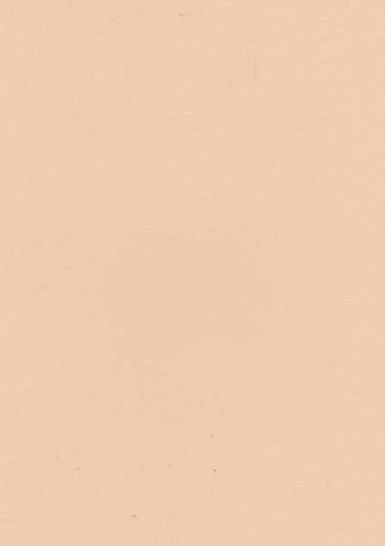 Lichtzalmkleurig papier, A4 (Locatie: 4406)
