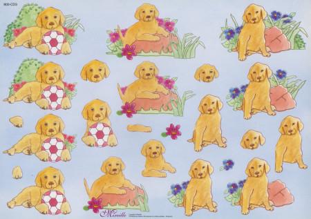 Mireillle knipvel honden 900-CD3 (Locatie: 1711)