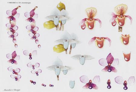 Wekabo knipvel bloemen 730 (Locatie: 4229)