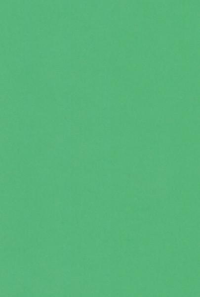 A5 karton groen 12