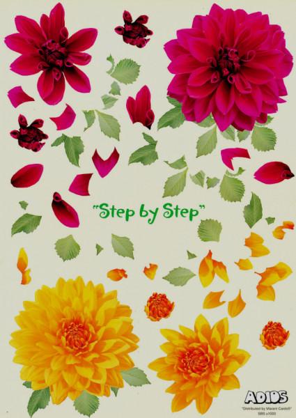 Adios knipvel bloemen SBSu1003 (Locatie: 0103)