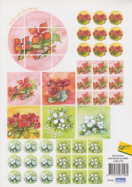 Avec knipvel bloemen 4.054.210 (Locatie: 2716)