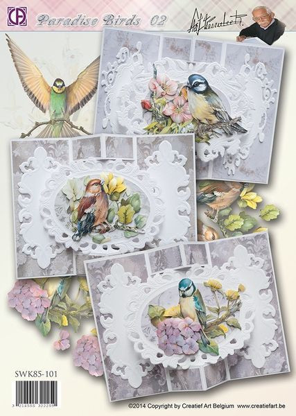 Creatief Art kaartenpakket Paradise Birds 02 SWK85-101
