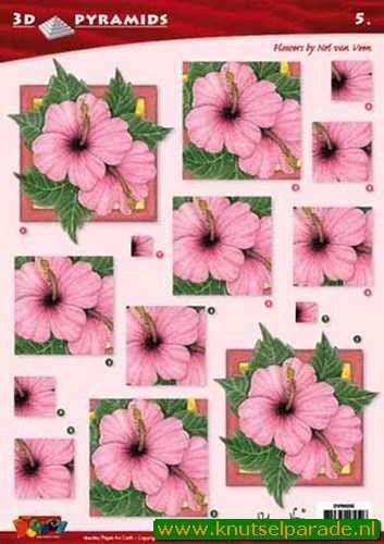Doodey knipvel pyramids bloemen DV96005 (Locatie: 6821)