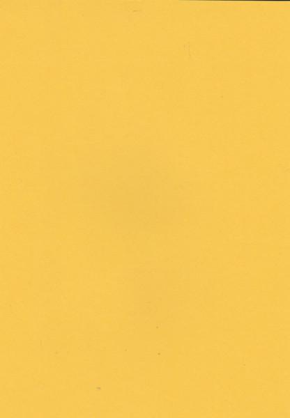 Geel karton, A4 (Locatie: 4508)