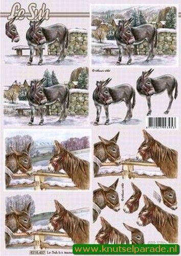 Le Suh knipvel ezels 8215407 (Locatie: 6551)