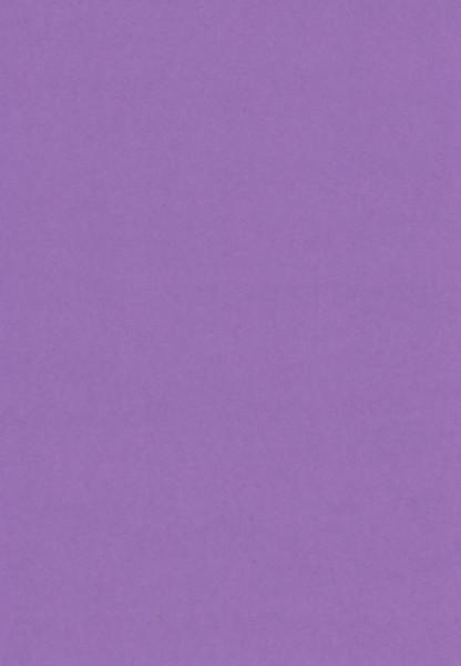 Paars karton, A4 (Locatie: 2303)