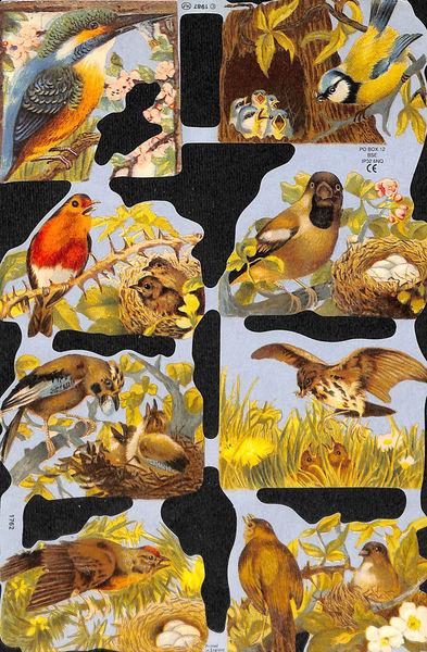 Poezieplaatje Vogels MLP1987 (Locatie: MP044)