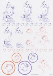 Hoca knipvel geboorte 228 (Locatie: 2528)