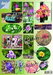 Joy! stansvel bloemen 0331 (Locatie: 0504)