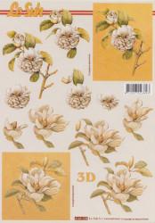 Le Suh knipvel bloemen 4169758 (Locatie: 6105)