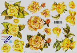 Le Suh knipvel bloemen 8215113 (Locatie: 6530)