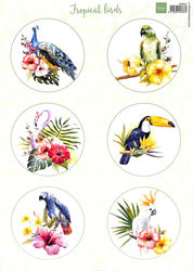 Marianne Design A4 knipvel tropical birds VK9561 (Locatie: 0505)