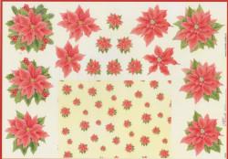 Mireille knipvel kerst X225 (Locatie: 5531)