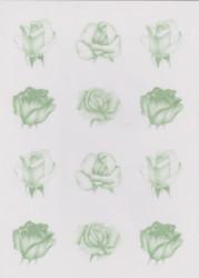 Pergamano roos groen vellum nr. 62552 (Locatie: 1733)