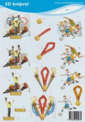 Voorbeeldkaarten sport nr. 2097 (Locatie: 4308)