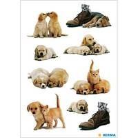 Herma stickers hondenwelpen 3 vel 5606 (Locatie HE012)