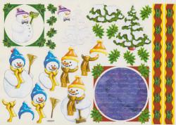 Knipvel winter VB0047 (Locatie: 2685)