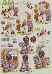 Le Suh knipvel honden nr. 8215279 (Locatie: 4522)