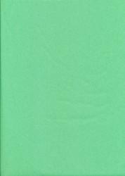 Tissuepapier lichtgroen 50 x 70 cm per vel