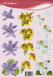 Voorbeeldkaarten knipvel bloemen 2217 (Locatie: 1562)