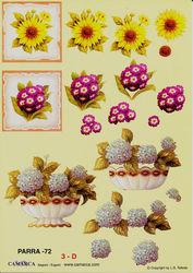 Camara knipvel bloemen parra 72 (Locatie: 6713)