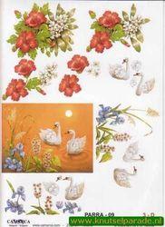 Camarca knipvel bloemen nr. PARRA 09 (Locatie: 5005)