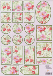 Knipvel bloemen SHSV222 (Locatie: 2718)
