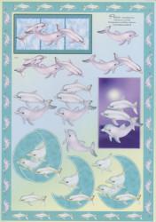 Knipvel dolfijn E10 (Locatie: 1410)