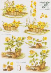 Le Suh knipvel bloemen 821523 (Locatie: 1520)