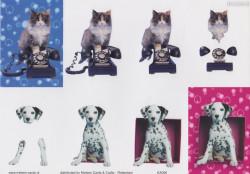 Nielsen Cards knipvel katten en honden KA006 (Locatie: 2614)