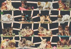 Poezieplaatjes honden vintage (Locatie: MP099)