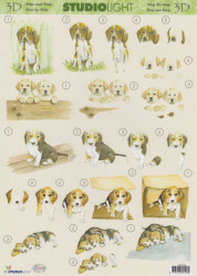 Studio Light knipvel honden MIH044 (Locatie: 5929)