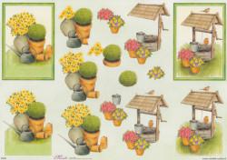 Mireille knipvel tuin nr. E549 (Locatie: 0919)
