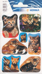 Herma stickers kattenfoto's 3 vel 3527 (Locatie: U177)