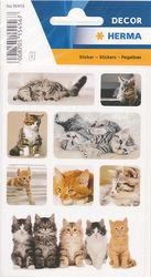 Herma stickers kleine katjes 3 vel 15456 (Locatie: U187)