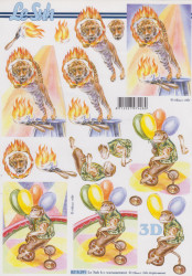 Le Suh knipvel circus 8215291 (Locatie: 4807)