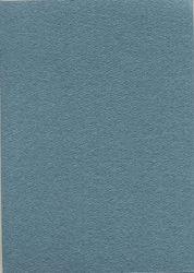 Merida glans karton A5 metallic donkergrijs 10 vel KAR5GRI5 (Locatie: M122)