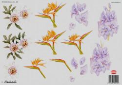 Wekabo knipvel bloemen 520 (Locatie: 6101)
