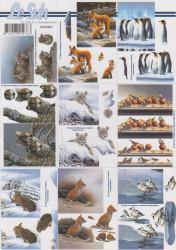 Le Suh dieren knipvel 4169687 (Locatie: 1404)