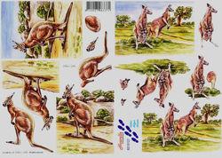 Le Suh knipvel kangoeroe 8215127 (Locatie: 533)