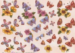 Mireille knipvel vlinders E165 (Locatie: 2869)