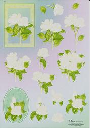 Nielsen cards knipvel bloemen E12 (Locatie: 1438)