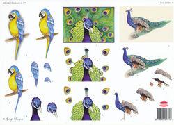 Wekabo knipvel vogels 771 (Locatie: 4311)