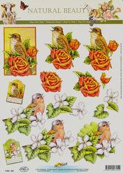 Doe Maar knipvel vogels 11053-325 (Locatie: 5941)