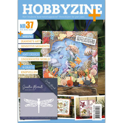 Hobbyzine Plus nr. 37 jul-aug 2020 HZ02004
