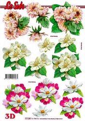 Le Suh knipvel bloemen 777251 (Locatie: 4235)
