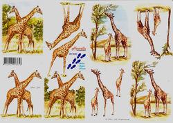 Le Suh knipvel giraffe 821580 (Locatie: 605)