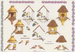Mireille knipvel vogels E136 (Locatie: 0705)
